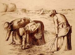 Fonds d'écran Art - Crayon les glaneuses de Milet