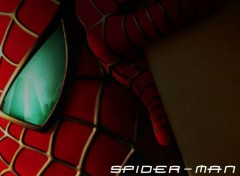 Fonds d'écran Cinéma Spider-Man