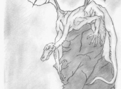 Fonds d'écran Art - Crayon dragonland