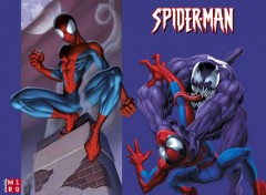 Fonds d'écran Comics et BDs SPIDEY VS VENOM