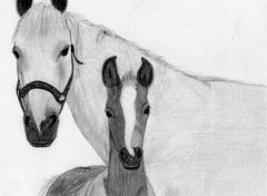 Fonds d'écran Art - Crayon Un de mes premiers dessins