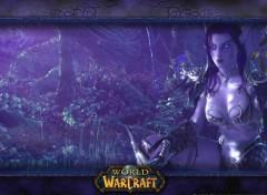 Wallpapers Video Games WOW Nightelf