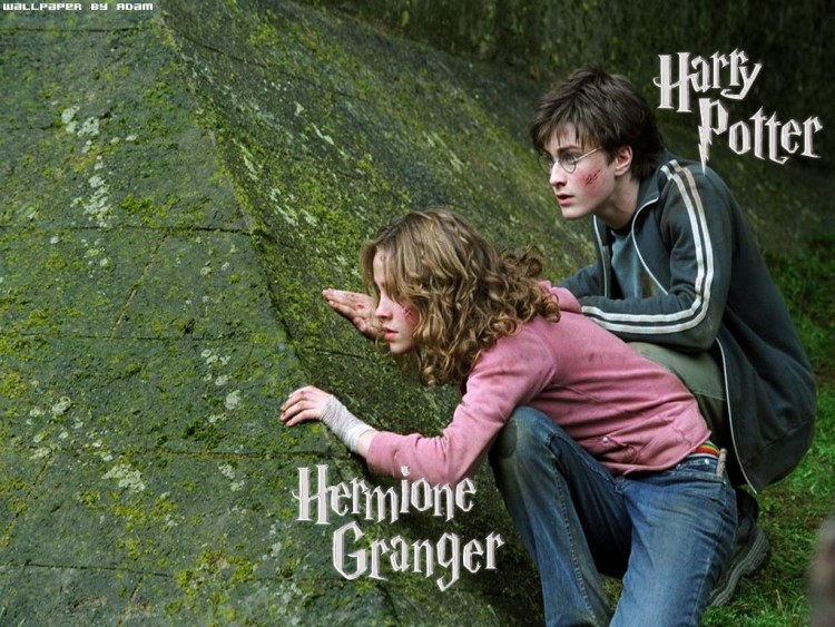 Fonds D Ecran Cinema Fonds D Ecran Harry Potter Et Le