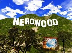Fonds d'écran Informatique Nreowood 1