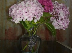 Wallpapers Nature Bouquet d'hortensia