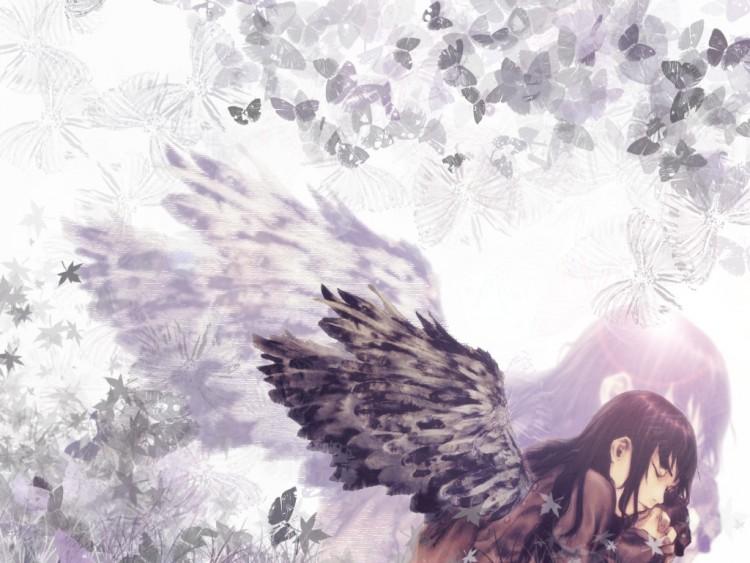 Wallpapers Manga Haibane Renmei Wallpaper N°70923