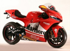 Fonds d'écran Motos ducati gp