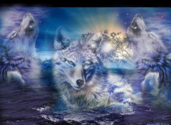 Wallpapers Digital Art Les Loups !!!