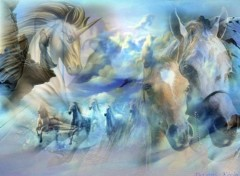 Wallpapers Animals Les Chevaux