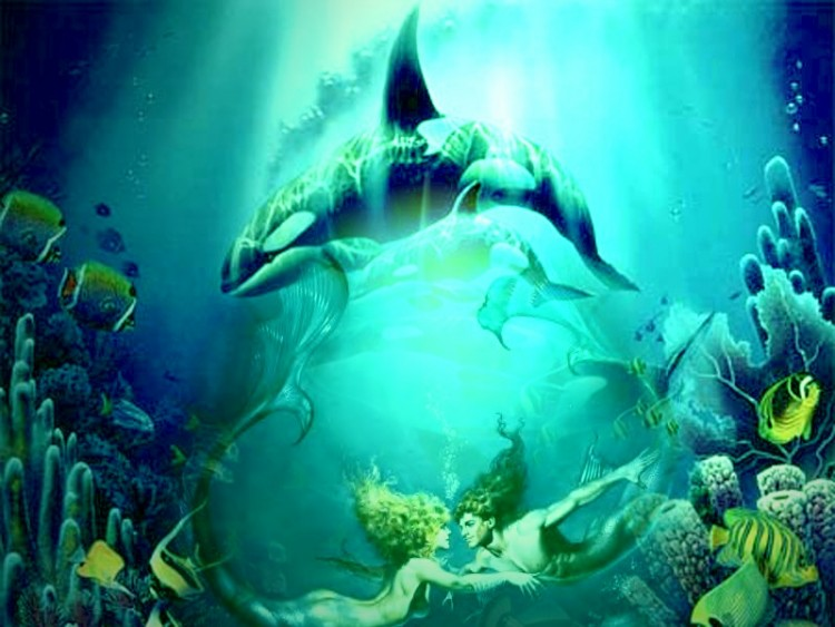 Wallpapers Digital Art Wallpapers Animals Fonds Marins By