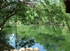 Fonds d'écran Nature Domaine de Nianing (Sénégal)