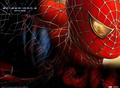 Fonds d'écran Cinéma Toile spiderman 2