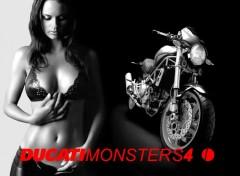 Wallpapers Motorbikes ducati