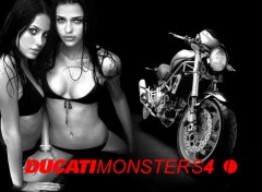 Wallpapers Motorbikes ducati