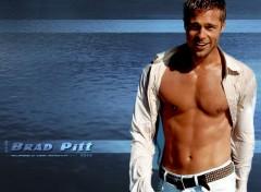 Fonds d'écran Célébrités Homme Brad Pitt
