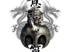 Fonds d'écran Art - Numérique The tiger and two dragons