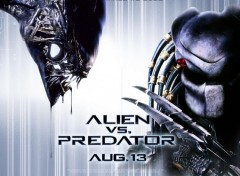 Wallpapers Movies AvP