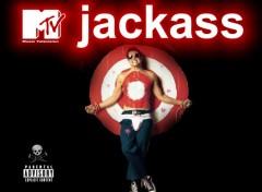 Fonds d'écran Séries TV JACKASS