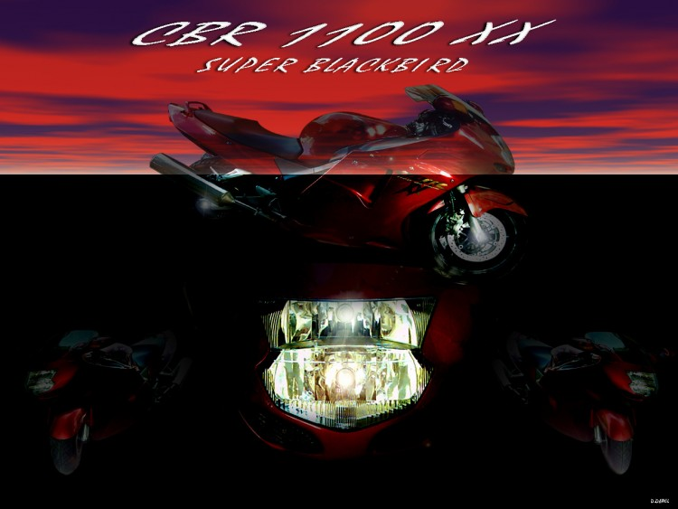 Wallpapers Motorbikes Honda 1100 CBR XX