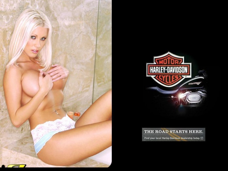 Fonds d'écran Erotic Art Moteurs et Pinups Dalene Kurtis - Harley Davidson 2005
