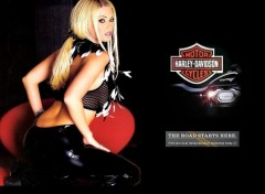 Wallpapers Motorbikes Jenna Jameson - Harley Davidson 2005
