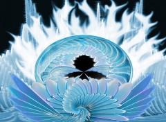 Fonds d'écran Art - Numérique Lotus