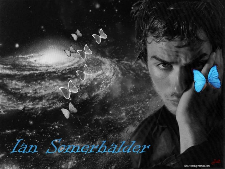 Fonds d'écran Célébrités Homme Ian Somerhalder Wall Ian Somerhalder 7
