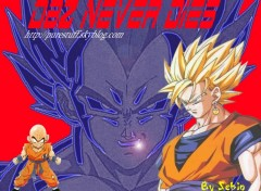 Fonds d'écran Manga Dbz never die