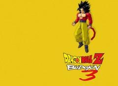 Fonds d'écran Jeux Vidéo Dragon Ball Z Budokai 3 : Goku Super Sayan 4