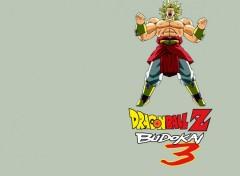 Fonds d'écran Jeux Vidéo Dragon Ball Z Budokai 3 : Broly
