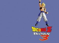 Fonds d'écran Jeux Vidéo Dragon Ball Z Budokai 3 : Gogeta