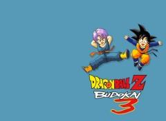 Fonds d'écran Jeux Vidéo Dragon Ball Z Budokai 3 : Trunks & Goten