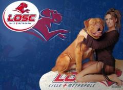 Wallpapers Sports - Leisures Les filles aiment les dogues