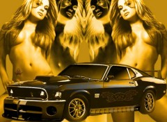 Wallpapers Cars Shelby GT 500