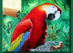 Fonds d'écran Art - Peinture Psittacidé d'Amérique du sud.