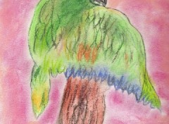 Fonds d'écran Art - Crayon Oiseau