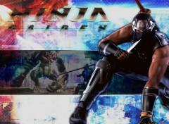 Wallpapers Video Games Ninja Gaiden - 01