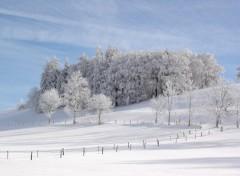 Wallpapers Nature Jura suisse
