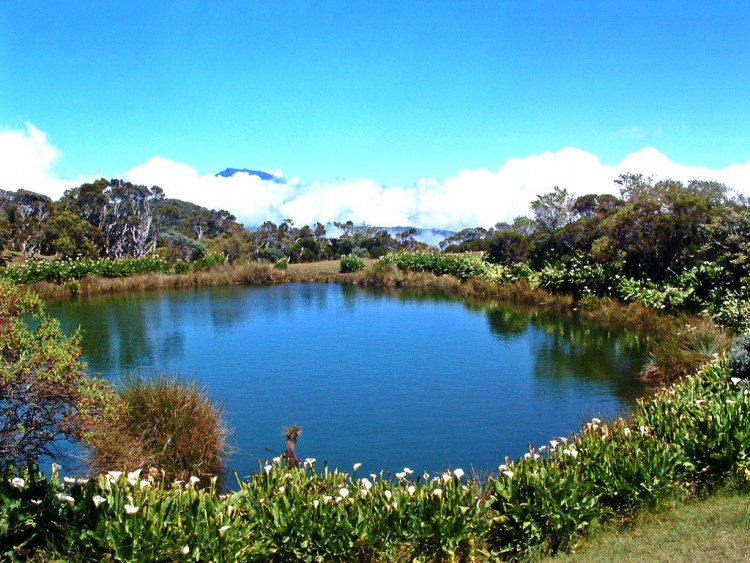 Fonds d'écran Voyages : Afrique La Réunion Ile de la Reunion