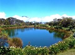 Fonds d'écran Voyages : Afrique Ile de la Reunion