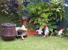 Fonds d'écran Objets Nains de jardins mexicains...