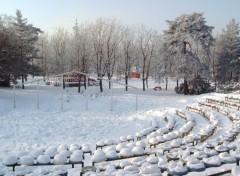 Fonds d'écran Voyages : Europe Timisoara sous la neige