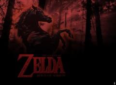 Fonds d'écran Jeux Vidéo Zelda Reign of Sorrow