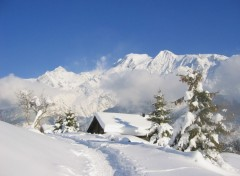 Wallpapers Nature Face au Mont Blanc