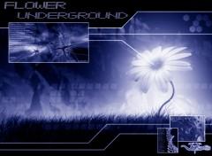 Fonds d'écran Art - Numérique Flower Underground