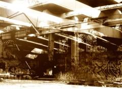 Fonds d'écran Art - Numérique la jungle de beton