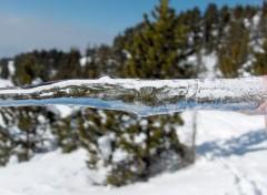 Fonds d'écran Nature nature de glace