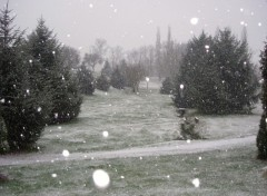 Fonds d'écran Nature Tombe la neige