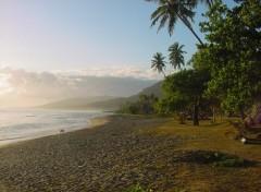Fonds d'écran Voyages : Océanie Plage sur la côte Est