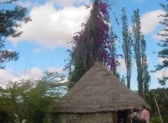 Wallpapers Trips : Oceania Tribu d'Atéou